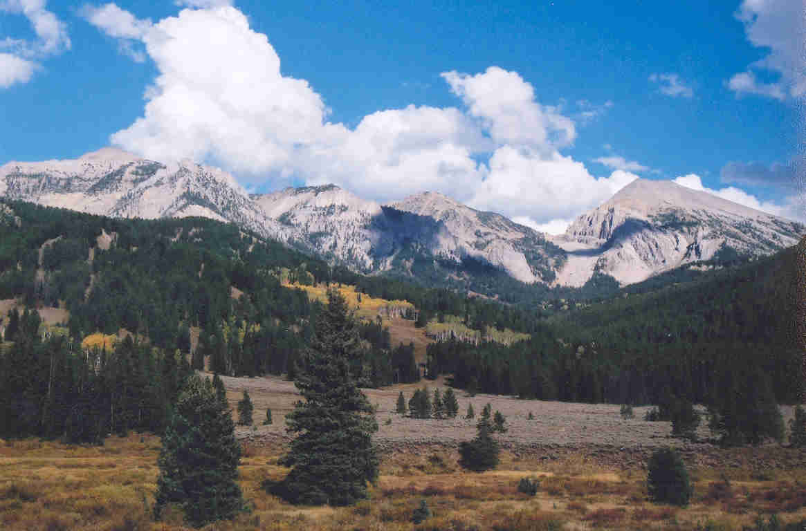 sci 275 bridger tetons Free essay: conservation vs preservation sci/275 03/09/14 peter kennedy dear editor, i am writing to you today because of the bridger teton national forest.